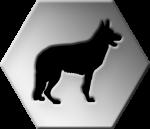 maitre-chien